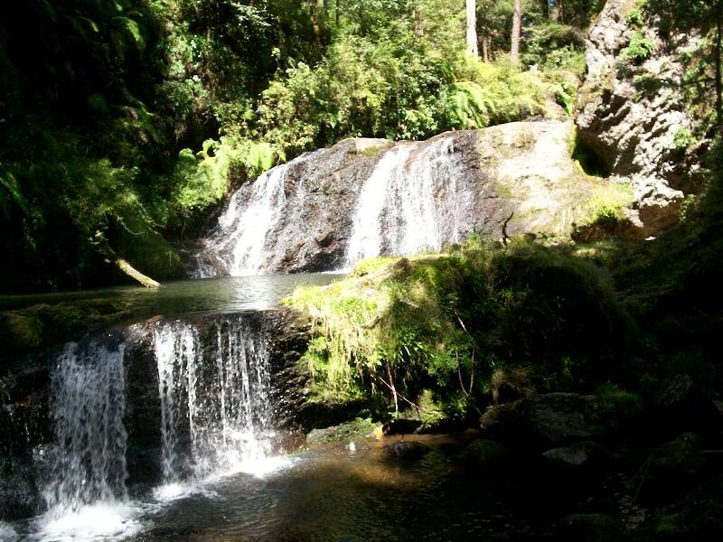 Paraje Vinazco: rincón para el turismo de naturaleza