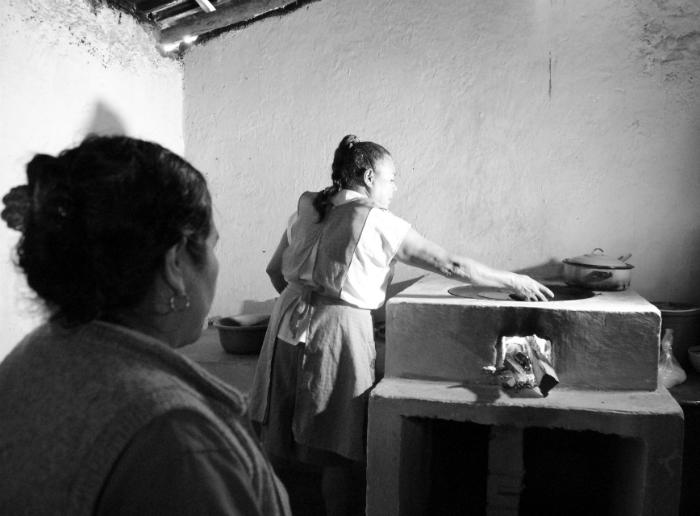 Natura aplica acciones para compensar huella de carbono en México