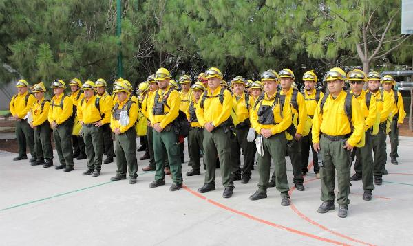 Incendios forestales en Canadá serán combatidos por mexicanos