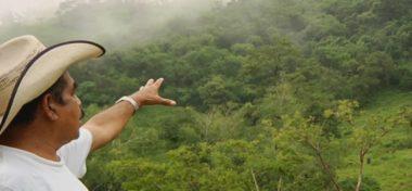 4 regiones cafetaleras en Oaxaca trabajan el desarrollo comunitario sostenible