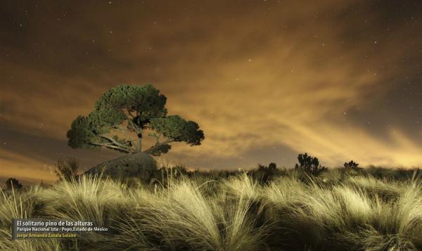 Quedan 28 días para participar en 4to Concurso Nacional de Fotografía de Naturaleza