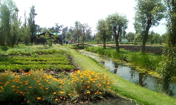Xochimilco, el lugar donde se cultivan las flores y la conciencia
