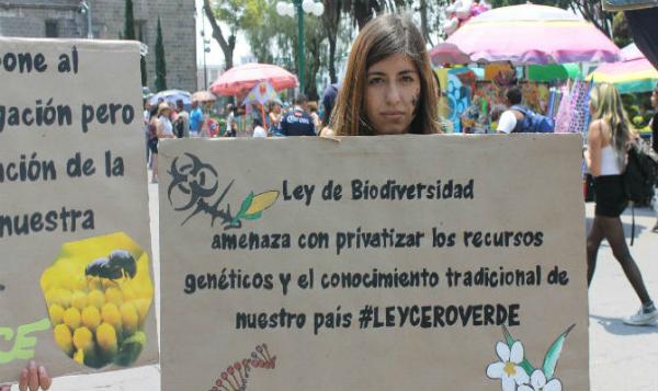 Organización civil mantiene oposición ante Ley General de Biodiversidad