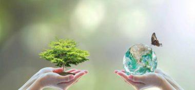 La pérdida de biodiversidad: un problema global con un enfoque local