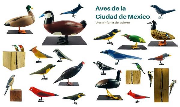 Aves toman el metro de la Ciudad de México