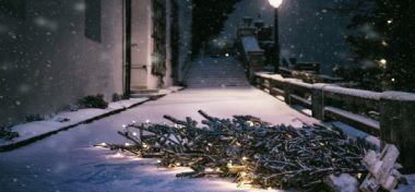 ¿Y qué hacemos con el árbol de navidad, después de la navidad?