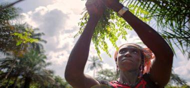 Otra mirada de la ambición: resiliencia ambiental