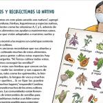 Agroecología y soberanía alimentaria, remedios olvidados