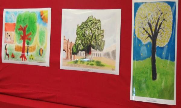 Se incrementan los participantes en concurso de dibujo forestal en México