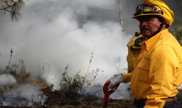 Combatir incendios forestales: prioridad de brigadistas durante Semana santa