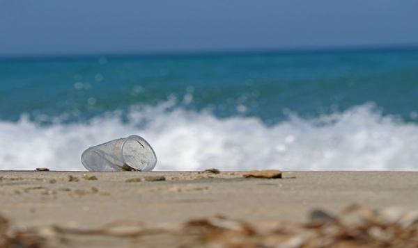 El Caribe se desplastifica