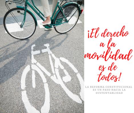 Reforma en materia de movilidad. ¿Logrará reducir muertes en accidentes?