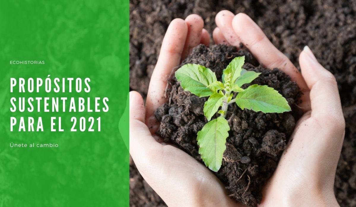 Propósitos sustentables para el 2021